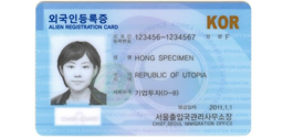 South Korean Resident Registration Number (RRN) and name Generator